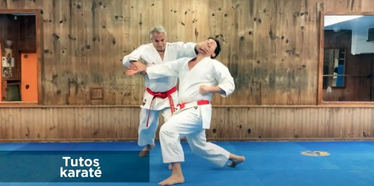 Vignette Tutos karate